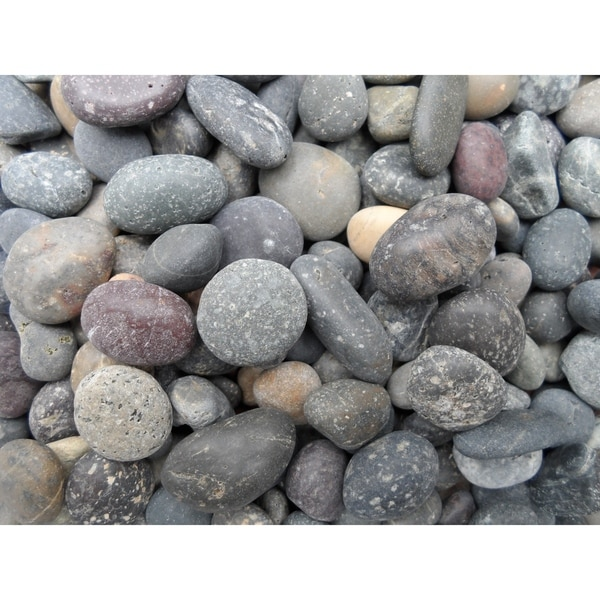 5/8 to 7/8-inch Mixed Mexican Beach Landscaping Pebble (40 lb. Bag)