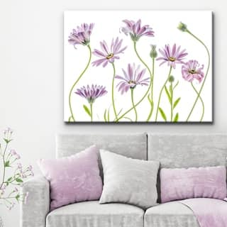 Cape Daisies I' Floral Wrapped Canvas Wall Art