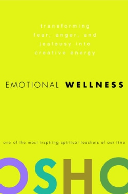 Emotional Wellness: Transforming Fear, Anger, And Jealousy into Creative Energy (Hardcover)