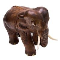 Wood Sculpture, 'Charming Little Elephant' - Thailand