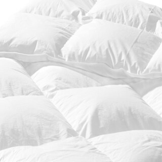 Providence Premium Winter Down Comforter (3 options available)