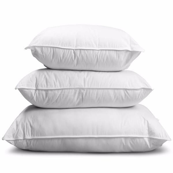 Shop Providence Premium Firm Hungarian Goose Down Pillow