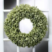 19 Inch Boxwood Wreath