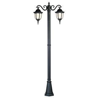 Hamilton Black 2-light Pole Light