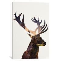"iCanvas ""Deer In Forest"" by Andreas Lie Canvas Print"