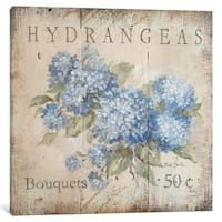 "iCanvas ""Hydrangeas Bouquets (50 Cents)"" by Debi Coules Canvas Print"