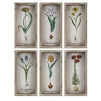 Bloom Brown Framed Wall Decors (Set of 6) - Green/Multi-color