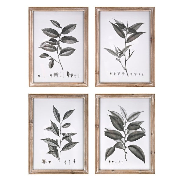 Aba Botanical Brown Wall Decors (Set of 4) - Grey/Multi-color