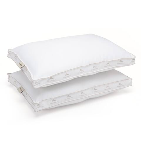 Special Mystery Assorted Queen-size Hypoallergenic Pillow (Set of 2) - White