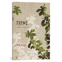 "iCanvas ""Thyme"" by Studio Mousseau Canvas Print"