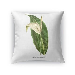 BOTANICAL TWO Accent Pillow By Kavka Designs