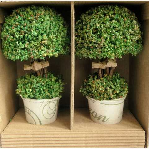 Nature's Topiary Set of 2