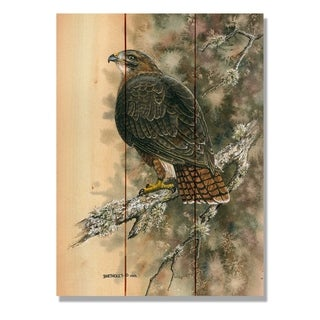 Bartholet's Red Tailed Hawk - 11x15 Indoor/Outdoor Cedar Wall Art - Multi-color