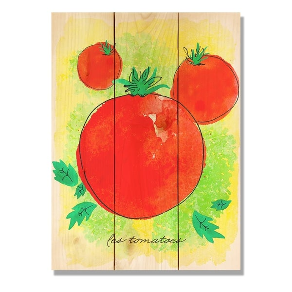 Le Tomato 11x15 Indoor Outdoor Wall Art Multi Color