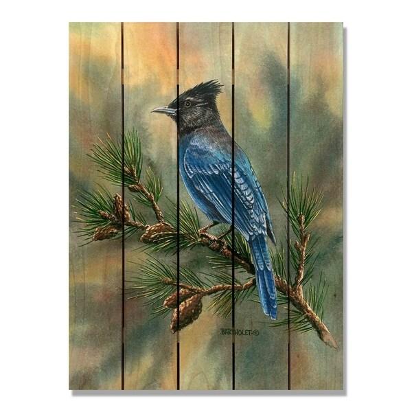 Bartholet's Steller's Jay - 28x36 Indoor/Outdoor Cedar Wall Art - Multi-color