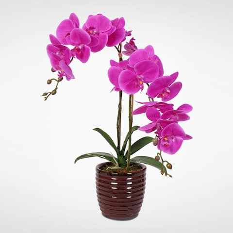 Real Touch Phalaenopsis Purple Beauty Orchids in a Red Vase