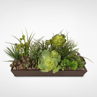 Succulents with Natural Pebbles in Metal Black Rectangle Planter