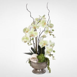 Real Touch Green Orchids & Succulents with Seashells In Metal Pot
