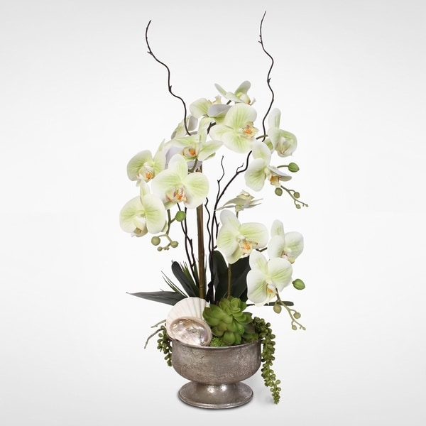 30 Spilled Flower Pots To Give Your Flowers A Liquid Touch: Shop Real Touch Green Orchids & Succulents With Seashells