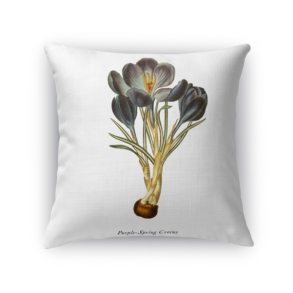 BOTANICAL FIVE Accent Pillow By Kavka Designs