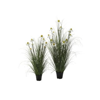 White Daisy in Wild Grass, Set of 2