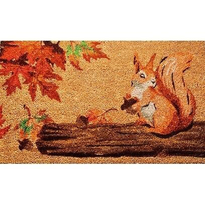 "Unbelievable Mats 18""x30"" Squirrel Door Mat"
