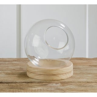 Small Food Safe Glass Globe with Natural Wood Base