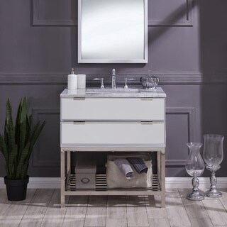 Harper Blvd Douferdale Mirrored and Soft Gray Vanity Sink