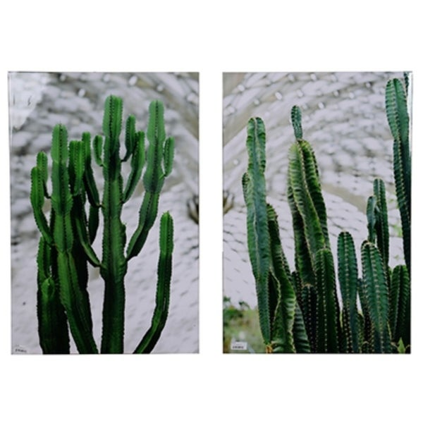 Twin Cacti Canvas Print ,Set of 2, Green