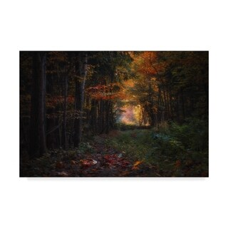 Sergei Shabunevich 'Autumn In The Forest' Canvas Art - Multi-color (4 options available)