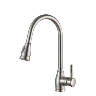 ANZZI Bell Single-Handle Pull-Out Sprayer Kitchen Faucet in Brushed Nickel - Silver