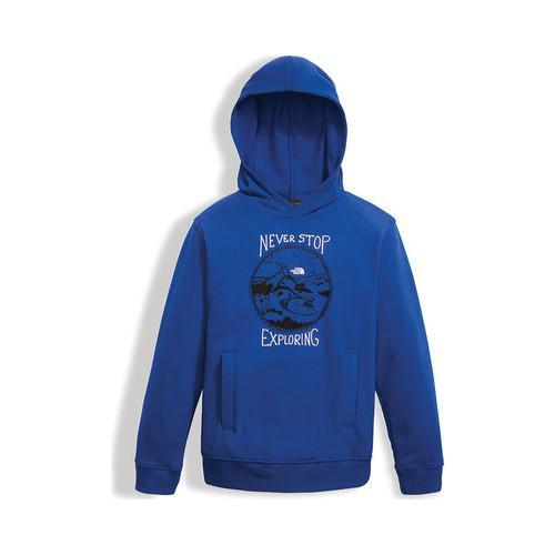 Boys' The North Face Logowear Pullover Hoodie Bright Cobalt Blue