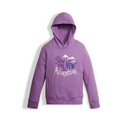 Girls' The North Face Logowear Pullover Hoodie Bellflower Purple