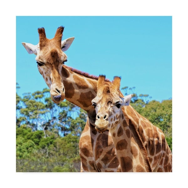 Shop Incredi 'The Young Giraffe' Canvas Art - Multi-color ...