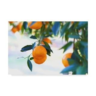 Incredi 'Oranges Hanging' Canvas Art - Multi-color