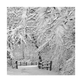 Incredi 'Winter Wonderland White' Canvas Art - Multi-color