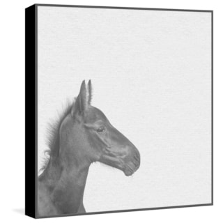Marmont Hill - Handmade Black Horse IV Floater Framed Print on Canvas