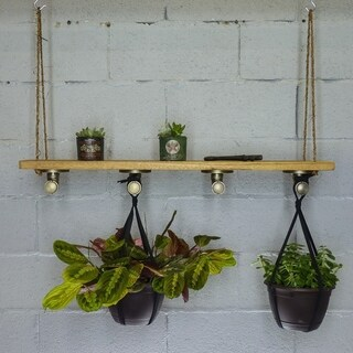 Furniture Pipeline Portland Farmhouse Industrial 4-Hook Hanging Shelf Planter