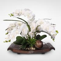 Real Touch White Phalaenopsis Orchids on a Curved Brown Tray