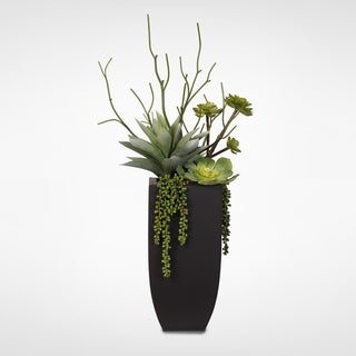 Botanical Succulent Variety in a Tall Black Modern Metal Planter