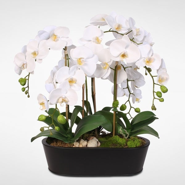 Real Touch White Phalaenopsis Orchids in an Oval Metal Planter