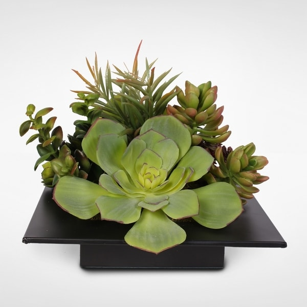 Lush Green Artificial Succulents in a Sleek Modern Container