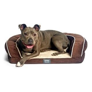 Cesar Millan Ortho Bliss Dog Bed