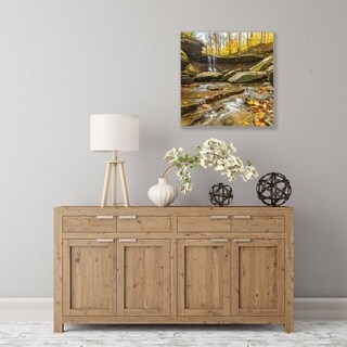 ArtWall Blue Hen Falls 3 Wood Pallet Art