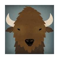 Ryan Fowler 'Buffalo Ii' Canvas Art