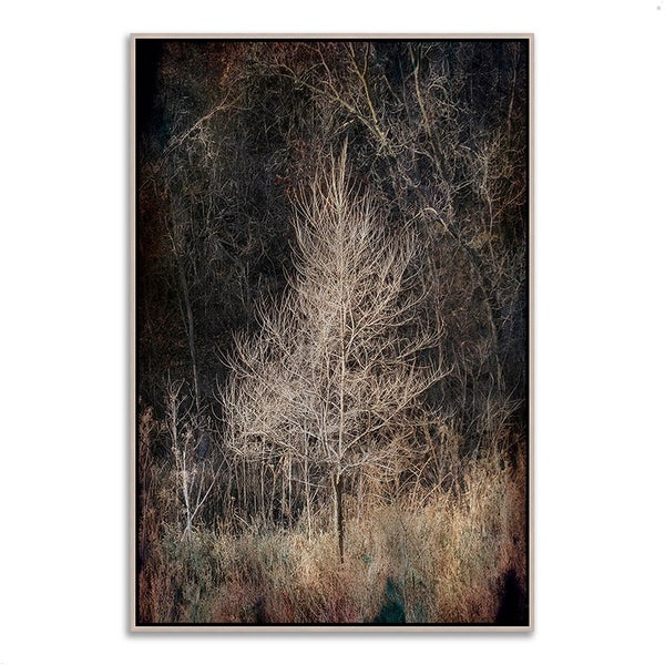 'Illumination' Framed Fine Art Giclee Print on Gallery-wrapped Canvas, Ready to Hang thumbnail