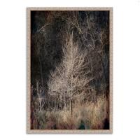 Tangletown Fine Art 'Illumination' Fine Art Giclee Wall Print