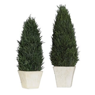 Uttermost Cypress Aged Stone Topiaries (Set of 2)