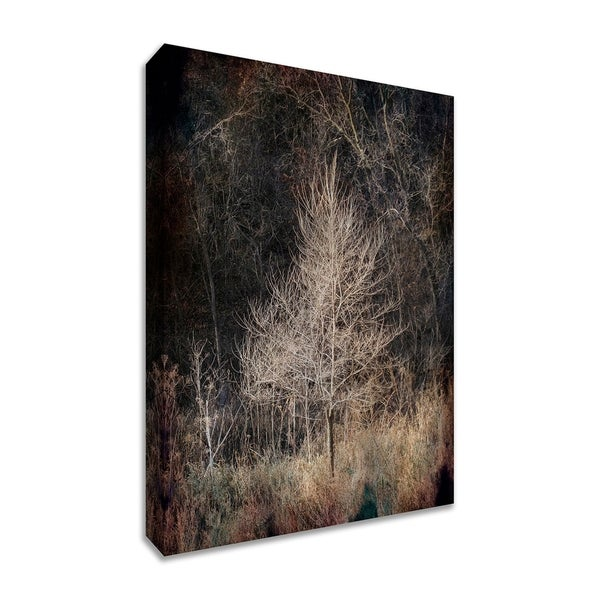 """Illumination"", Fine Art Giclee Print on Gallery Wrap Canvas, Ready to Hang thumbnail"