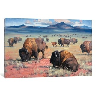 "iCanvas ""Home On The Range"" by Jack Sorenson Canvas Print (4 options available)"